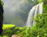 Alaya Eco Parque